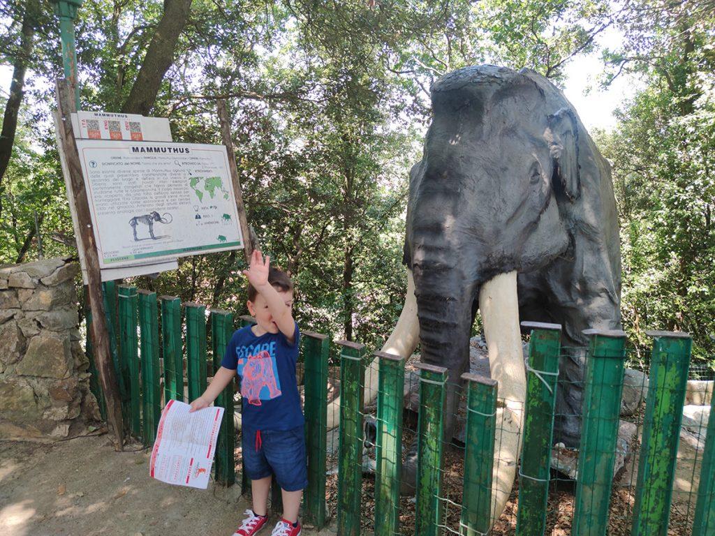 l'immagine ritrae mio figlio davanti ad un Mammut mentre prova ad imitarne il verso